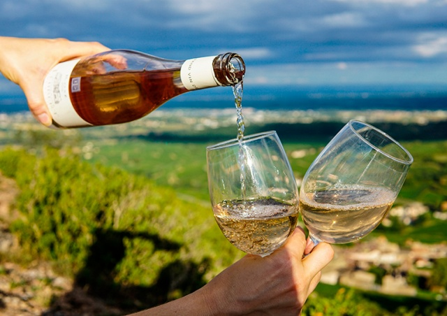 Десять прекрасных французских и итальянских вин до 200 крон