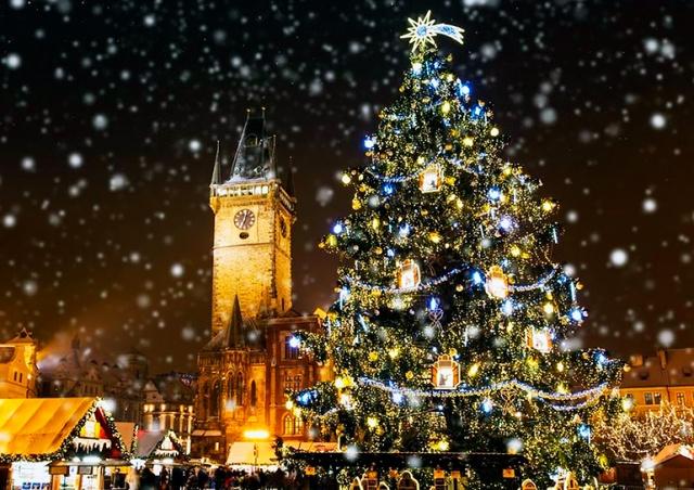 Прага объявила вознаграждение за помощь в поисках рождественской ёлки
