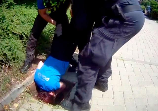 В Чехии полицейские опустили коллегу в канализационный люк, чтобы спасти утят: видео