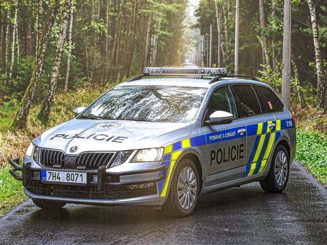 Полиция Чехии расследует смерть школьника от огнестрельного ранения