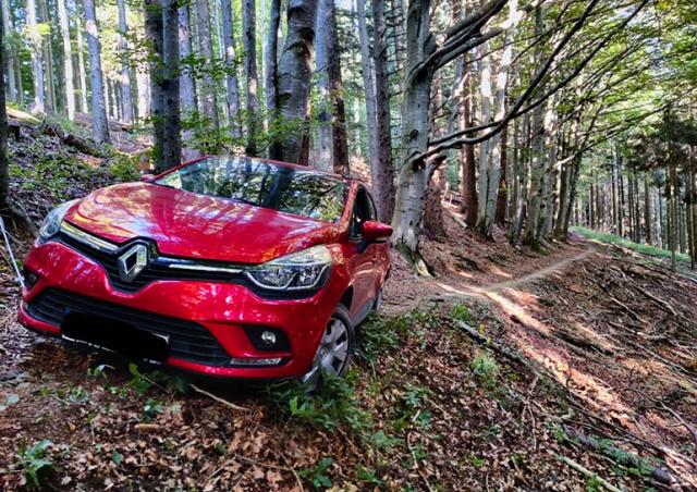 Чешский водитель доверился навигатору и оказался в австрийском лесу