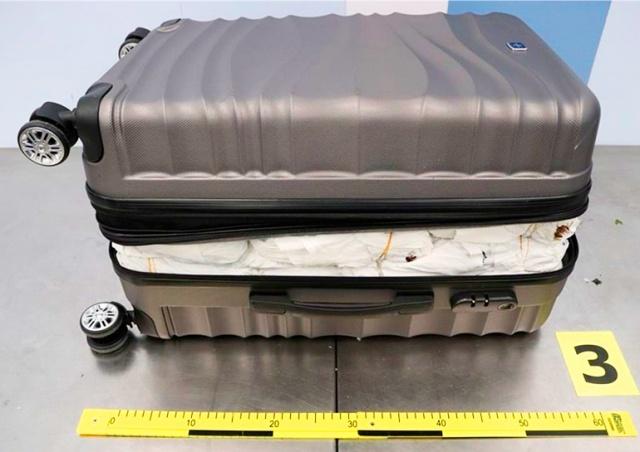 В аэропорту Праги задержали иностранцев с полными чемоданами запрещенного растения