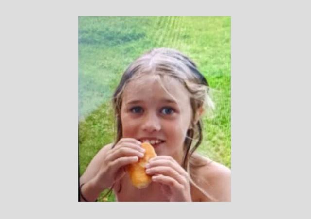 В Чехии ищут 8-летнюю девочку, потерявшуюся в лесу