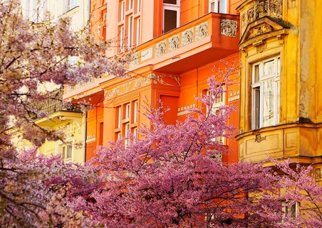 Пражский район Винограды вошел в список самых крутых в мире