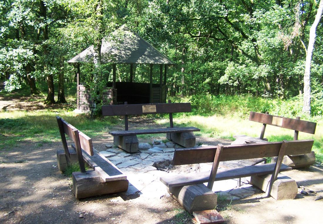 Место для пикника в парке Kunratický les