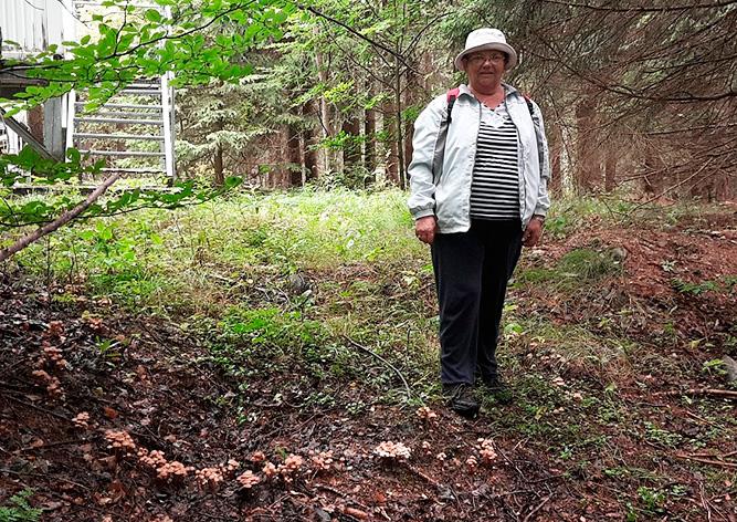 Жительница Чехии нашла рекордный «ведьмин круг»