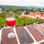 бурчак-винобрани-Прага-
