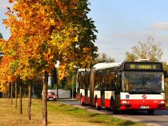 автобус-в-Праге
