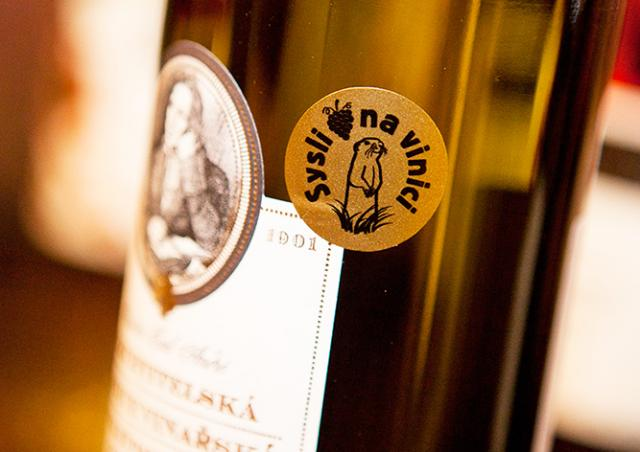 Жителям Чехии предложили поддержать сусликов бокалом вина