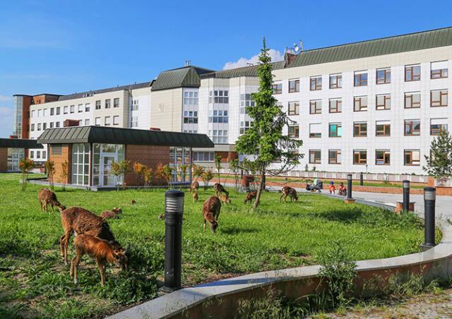 Эвакуацию пражской больницы отменили