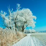 мороз-зима-снег