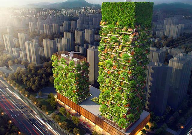 В Китае для борьбы со смогом построят «Вертикальный лес»